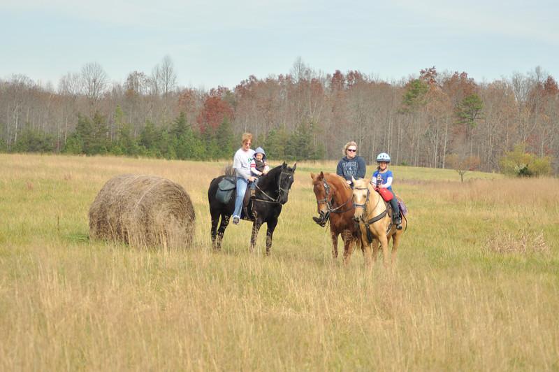 horse-riding-0141.jpg