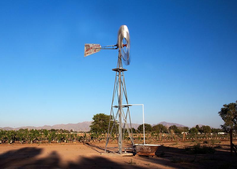IMG_5603 windmill crp 1.jpg
