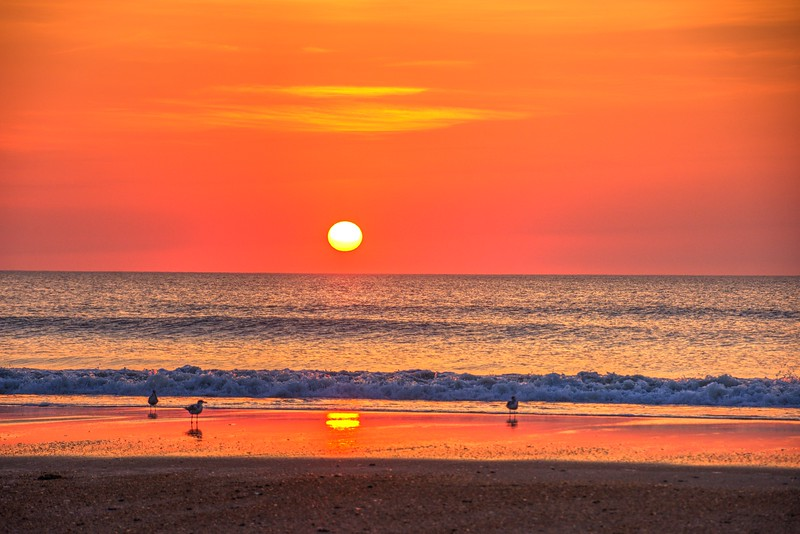 Sunrise-corolla-June13a-Beechnut-Photos-rjduff.jpg