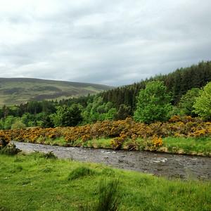 Scotland - Innerleithen