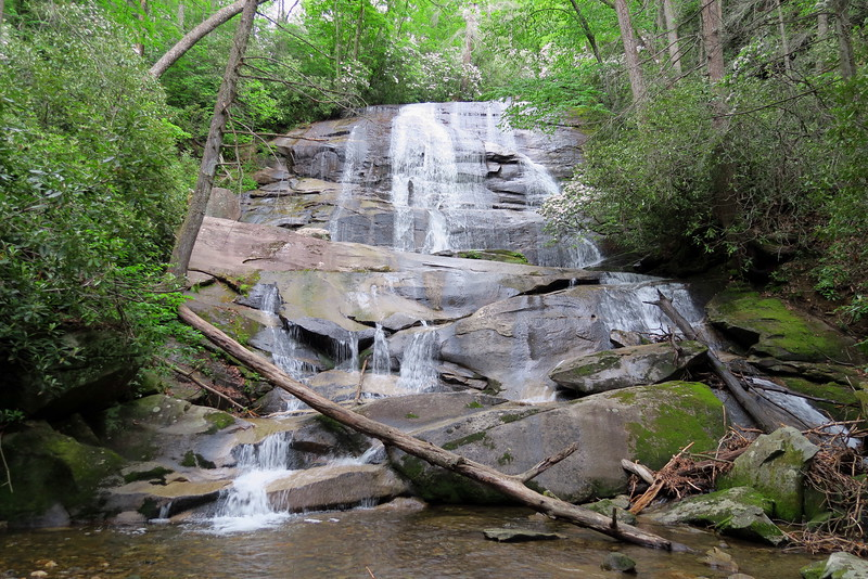 Cove Creek Falls Loop, Transylvania County (5-28-15)