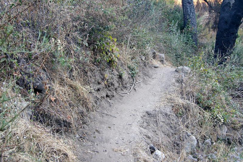 20110825018-El Prieto Trailwork Banner.JPG
