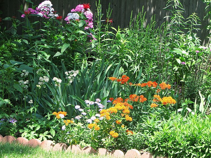 garden-2007-06-0614_std.jpg