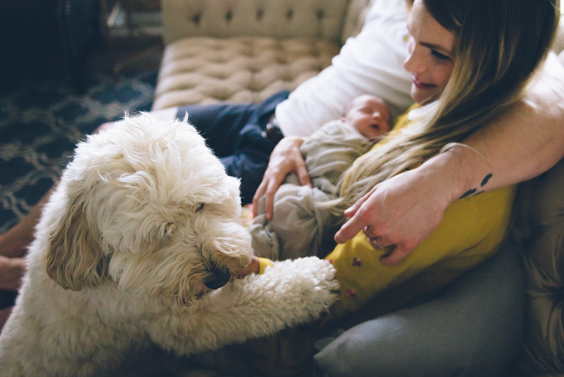 Rowan Chapman Fresh48 newborn Minneapolis St Paul Twin Cities Northfield newborn birth photographer-95.jpg