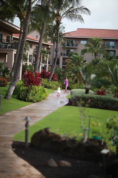 Kauai_D4_AM 023.jpg