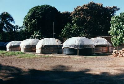 Hawaii Waianae Taro Farm 1998