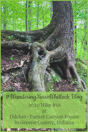 2020 Hike #18 on May 10th at Dilcher-Turner Canyon Forest in Greene County Indiana