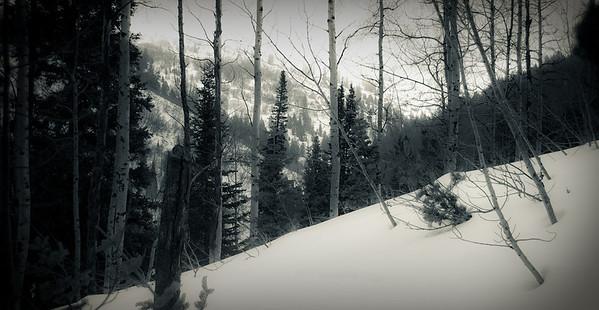 Farmington Canyon Snowshoeing