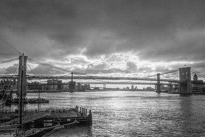 morningglory(BrooklynBridge)