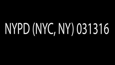 NYPD (NYC, NY) 031316