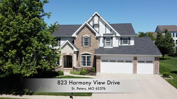 823 Harmony View Drive