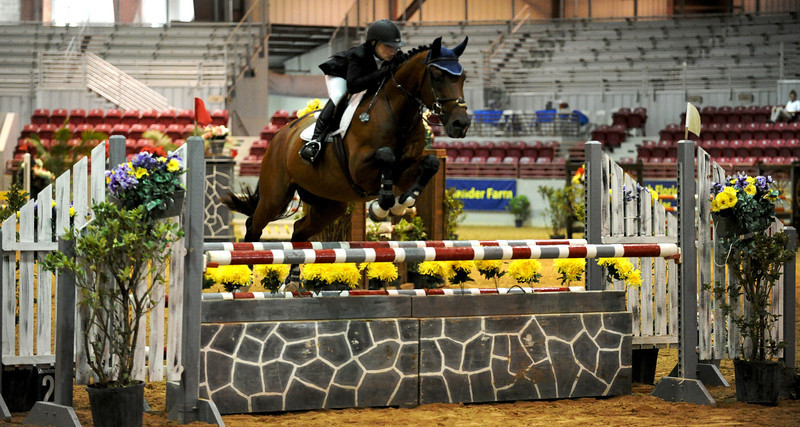Horse show (43).jpg