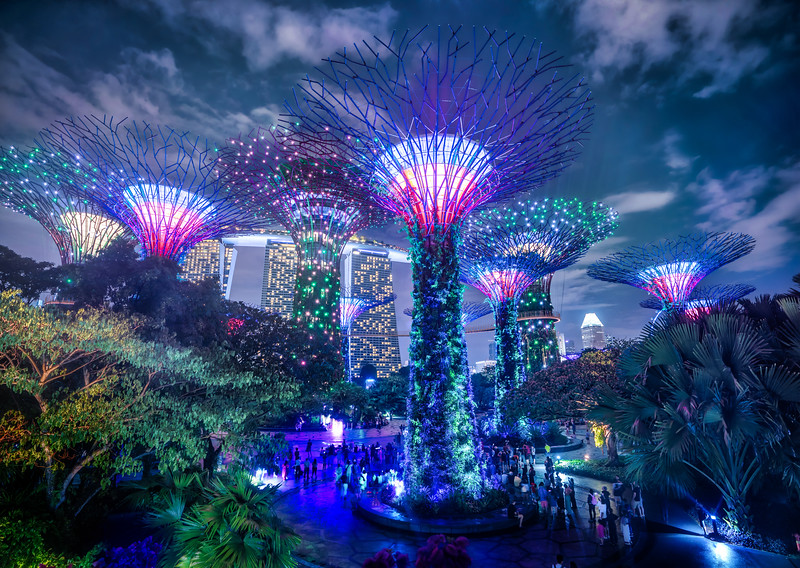 Singapore Flower Party