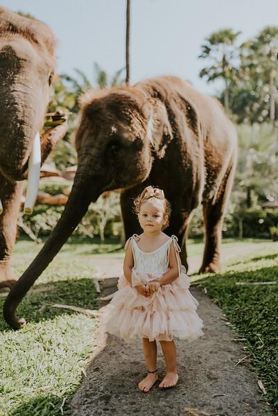 VTV_family_photoshoot_elephants_Bali_ (34).jpg