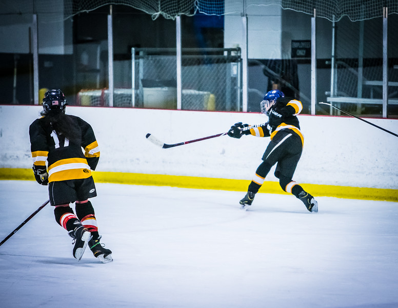 Bruins2-481.jpg