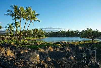 Waikoloa Marriott Royal Luau