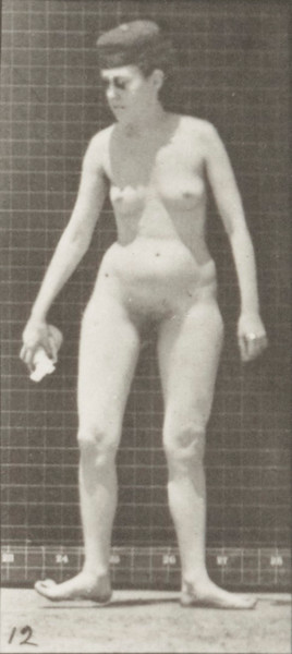 Nude woman stooping, lifting a handkerchief and turning