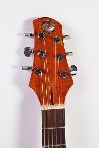 Fat Cat Guitars-160.jpg