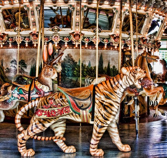 carousel tiger 5 IMG_4249.jpg