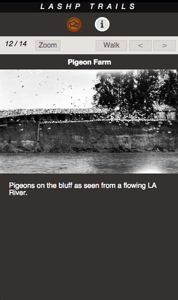 PIGEON FARM 12.png