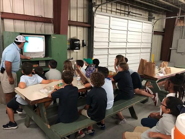 3rd Grade Field Trip to Taylor & Fulton Tomato Plant