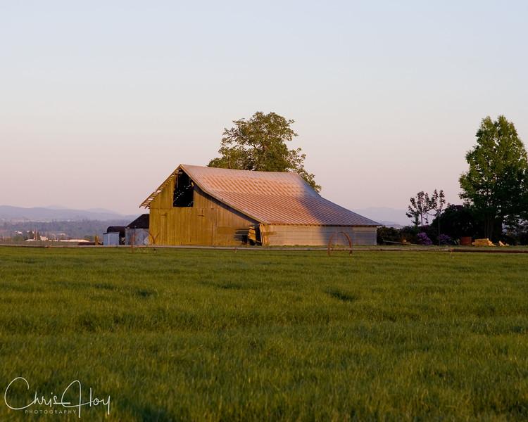 barn and grass field.jpg