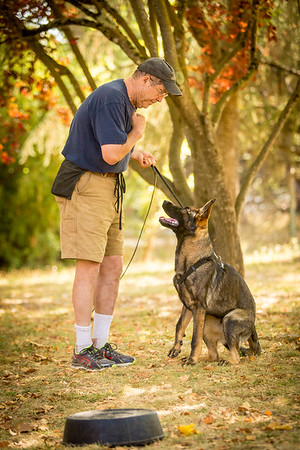 2015 Fall Obedience