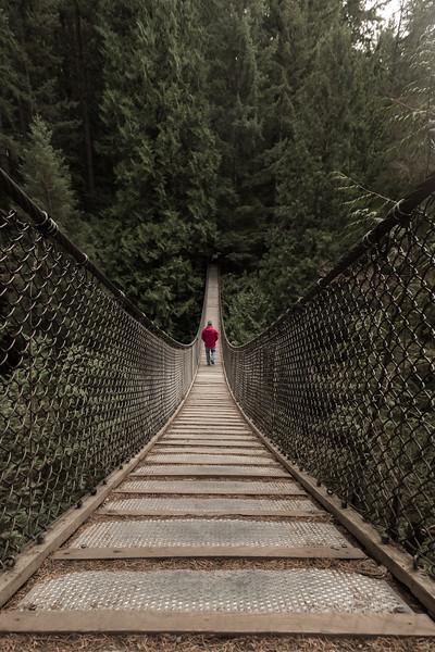 Lynn Valley Suspension Bridge copy.jpg