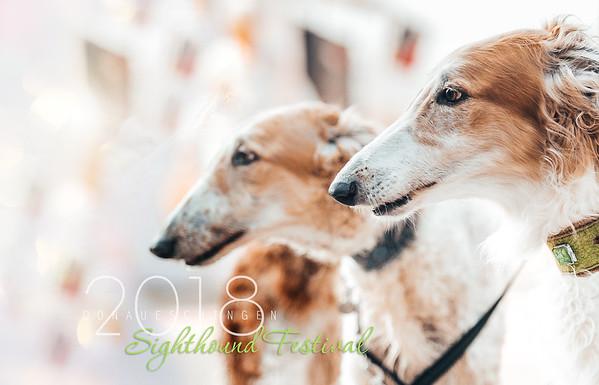 Donaueschingen Sighthound Festival 05/08/18