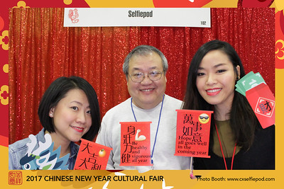 2017 Chinese New Year Fair