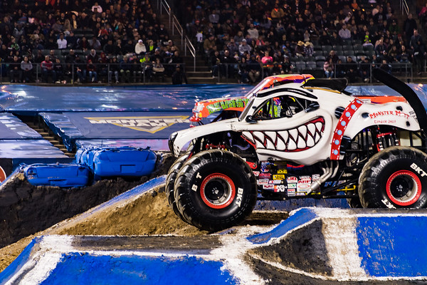 Monster Mutt Dalmatian (Candice Jolly)