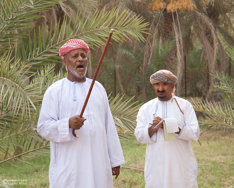 Palm Tree Auction 13- Mudhaibi.jpg