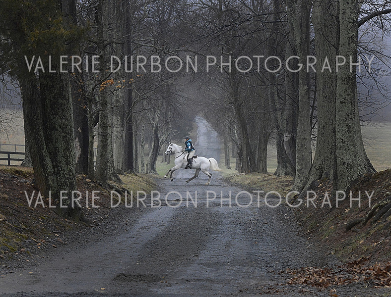 Valerie Durbon Photography.jpg