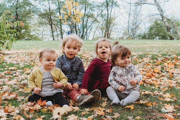 Cousins Fall