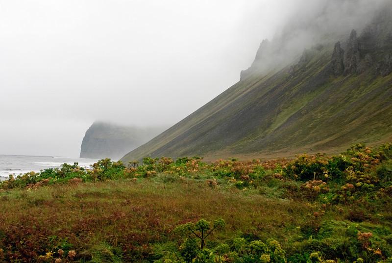 Hælavíkurbjarg í þokunni
