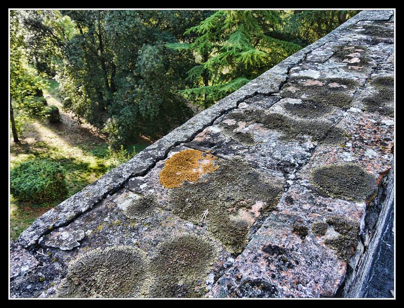 2006-09 Villa di Rusciano 036.jpg