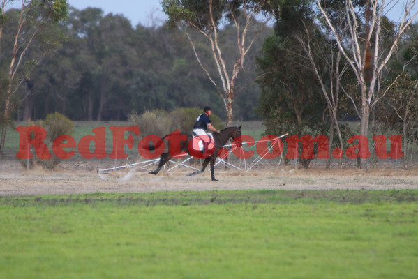 2009 03 28 Capel ODE CrossCountry PreNovice