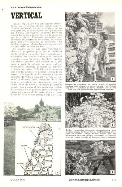 haga_de_su_cerca_un_jardin_vertical_julio_1947-02g.jpg