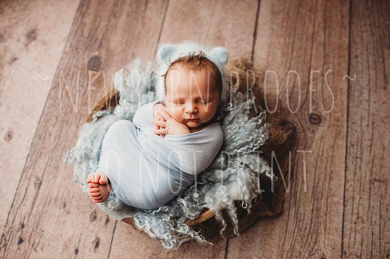 jack newborn proofs