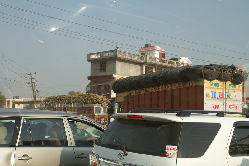 India_2012Feb-5569.jpg