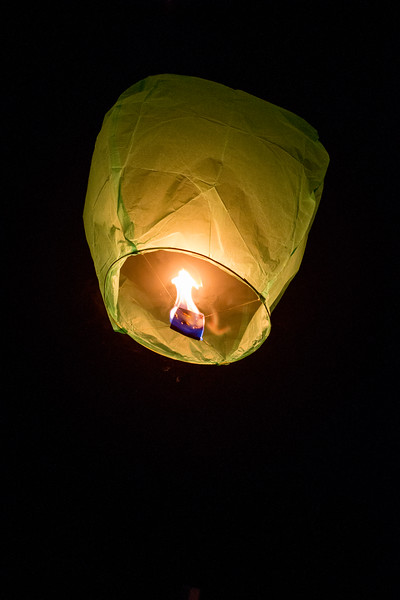 Holly Days Lantern Launch-26.jpg