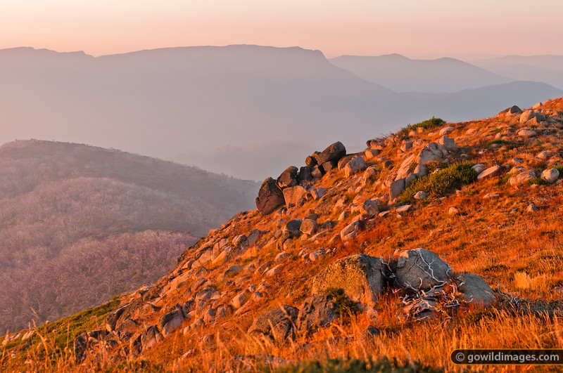 Warm, early morning light on Mt Stirling's south summit, with (L-R) Mt Eadley Stoney, The Bluff and Mt McDonald beyond