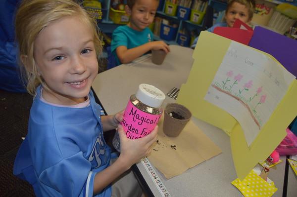 7th Week of Kindergarten- Archnids