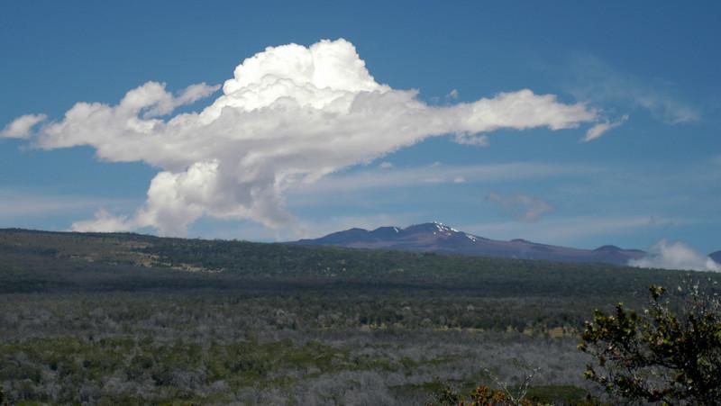 224- 20080412- Hawaii 15- Volcano Nat'l Park DSC_2933.jpg