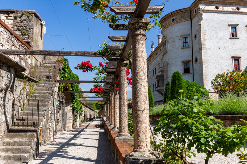 Rose Garden Trellis at Buonconsiglio Castle