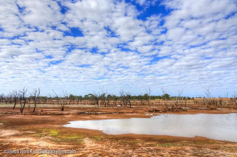 Australia-Queensland-.jpg