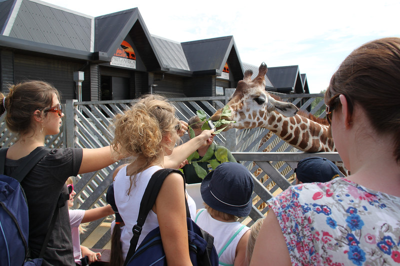 colchester zoo (69).jpg