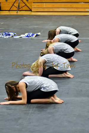 Vienna HS Winter Guard