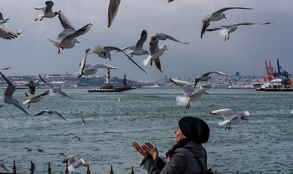 Istanbul Turkey 2015