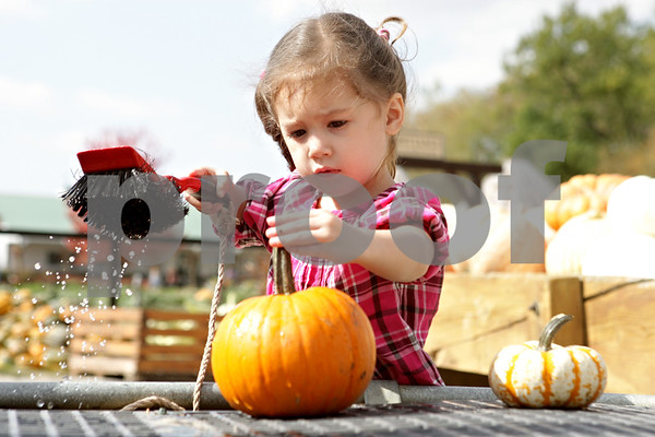 20121012 Week of October 7 to 13, 2012